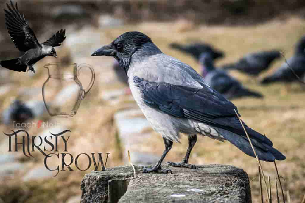 TheThirsty Crow Moral Stories for Kids