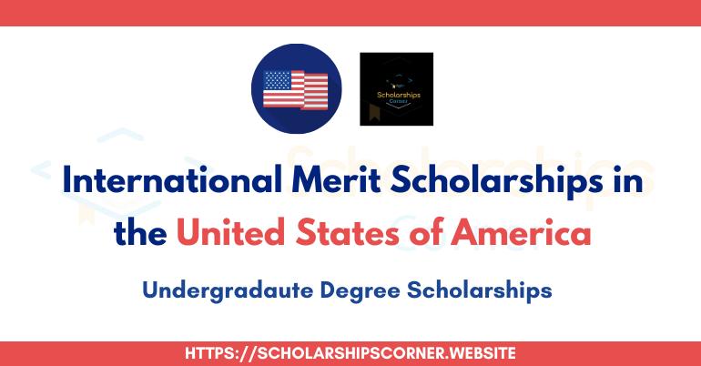 International Merit Scholarship for Undergraduate Students
