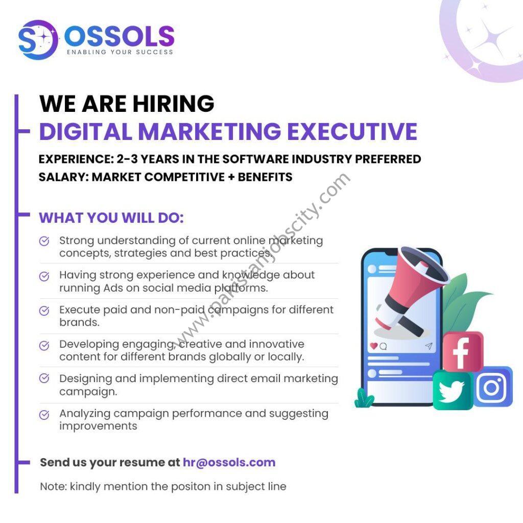 Ossols Pvt Ltd Jobs Digital Marketing Executive