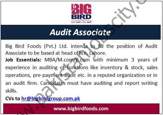 Big Bird Foods Pvt Ltd Jobs Audit Associate