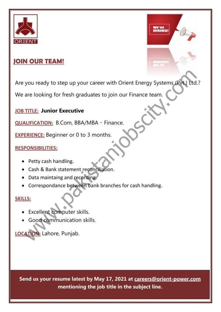Orient Energy Systems Pvt Ltd Jobs Junior Executive