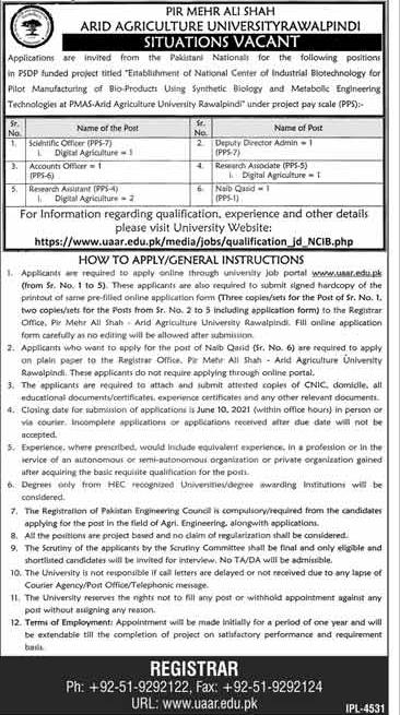 Jobs of PMA Ariz Agriculture University Rawalpindi May 2021