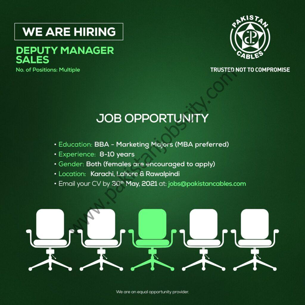 Pakistan Cables Ltd Jobs Deputy Manager Sales