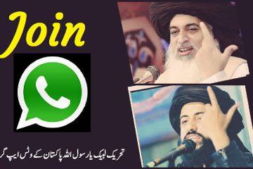 TLP Whatsapp Groups Link Rizvi Media Whatsapp Group
